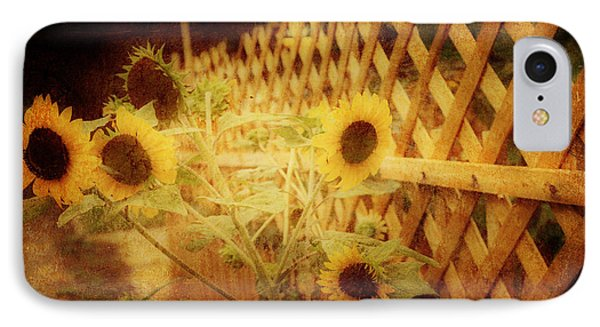 Sunflowers And Lattice IPhone Case by Toni Hopper