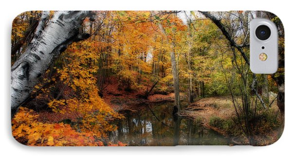 In Dreams Of Autumn Phone Case by Kay Novy