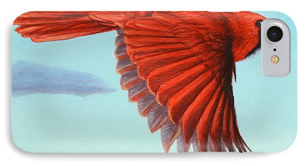 In Flight IPhone Case by James W Johnson