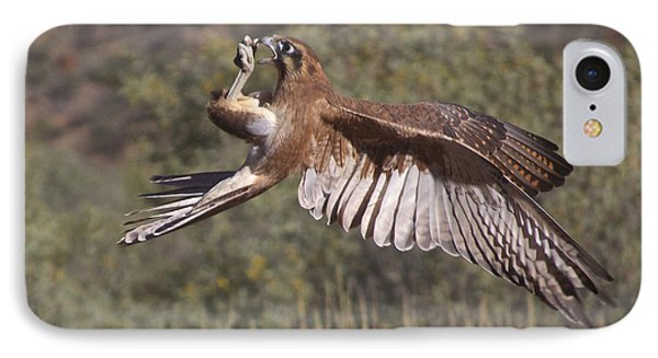 In Flight Meals IPhone Case by Venetia Featherstone-Witty