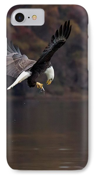 IPhone Case featuring the photograph In Flight Snack by Alan Raasch