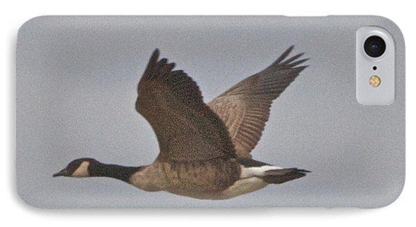 In Flight IPhone Case by William Norton