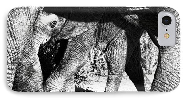 In Mother's Shadow IPhone Case by Douglas Barnard