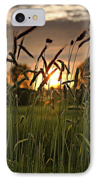 In The Field IPhone Case by Michaela Preston