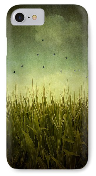 In The Field IPhone Case by Trish Mistric
