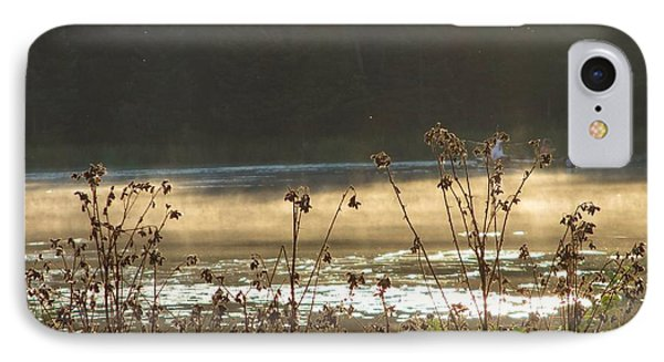In The Golden Light IPhone Case by Mary Wolf