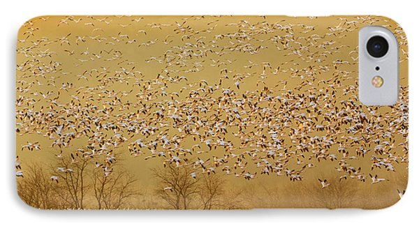 Geese iPhone 7 Case - In The Magic Golden Would by David Hua