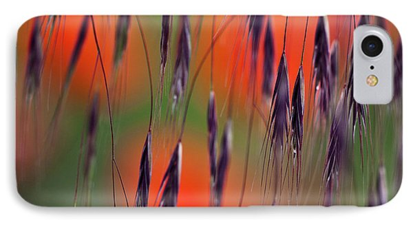 In The Meadow IPhone Case by Heiko Koehrer-Wagner