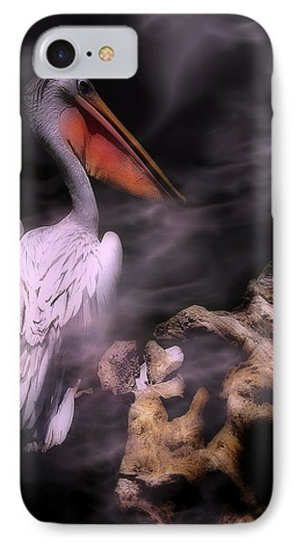 In The Misty Moonlight IPhone Case