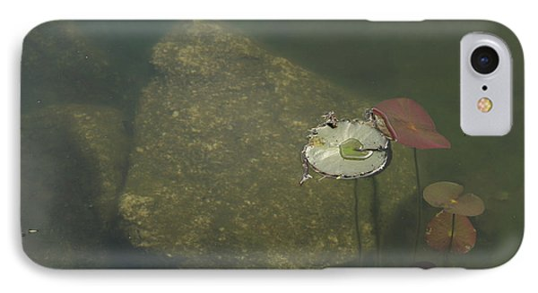 IPhone Case featuring the photograph In The Pond by Carol Lynn Coronios