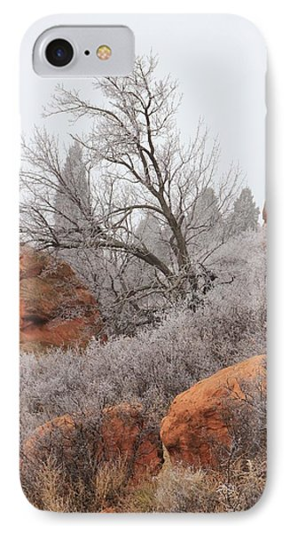 In The Quiet Of The Fog 4 Phone Case by Diane Alexander