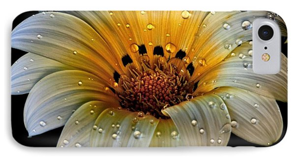 In The Spotlight IPhone Case by Shirley Mangini