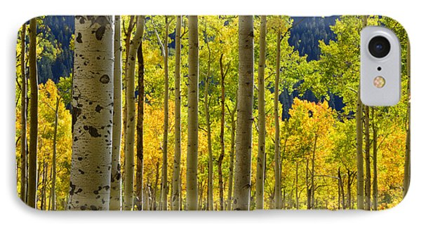 Independence Pass Fall Colors IPhone Case by Ray Mathis