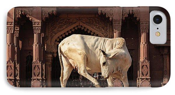 India, Rajasthan, Jodhpur IPhone Case by Alida Latham
