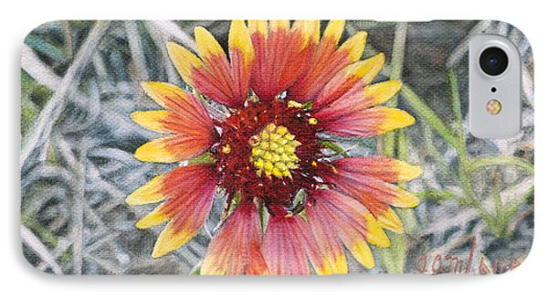 IPhone Case featuring the painting Indian Blanket by Joshua Martin