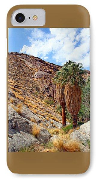 Indian Canyons View With Two Palms Phone Case by Ben and Raisa Gertsberg