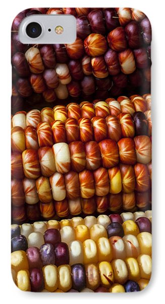 Indian Corn Harvest Time IPhone 7 Case by Garry Gay
