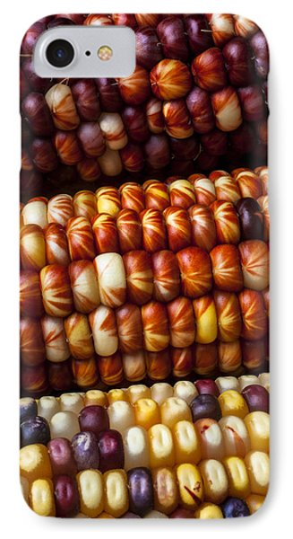 Indian Corn Harvest Time IPhone Case by Garry Gay