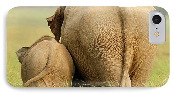 Indian Elephant And Young,corbett IPhone Case