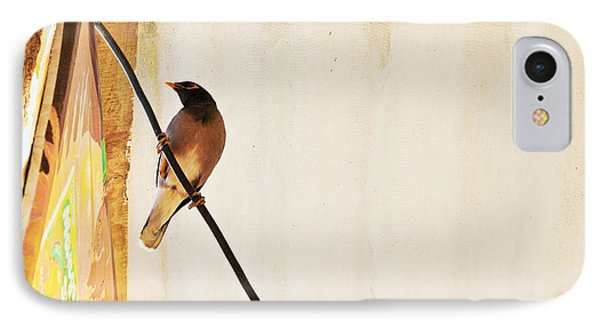 Indian Myna Comes To Dinner Phone Case by Kantilal Patel