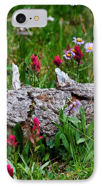 IPhone Case featuring the photograph Indian Paintbrush by Ronda Kimbrow