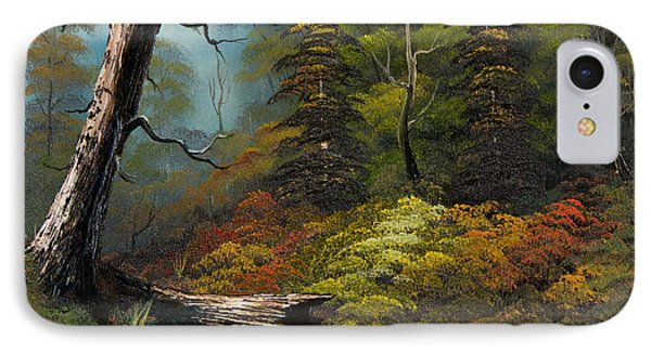 Secluded Forest IPhone Case by C Steele
