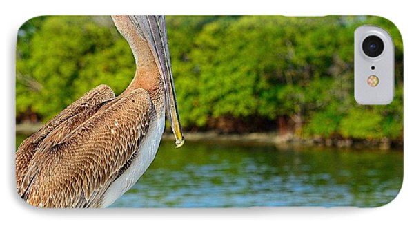 IPhone Case featuring the photograph Injured Pelican by Pamela Blizzard