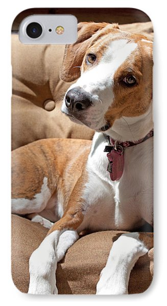 IPhone Case featuring the photograph Inquisitive by Jean Haynes