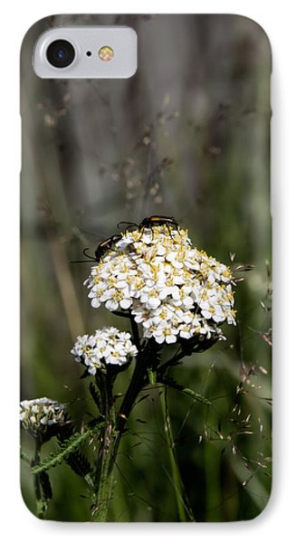 IPhone Case featuring the photograph Insect On White Flower by Leif Sohlman