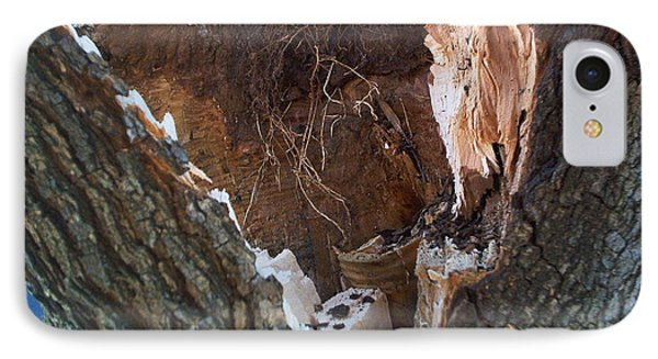 IPhone Case featuring the photograph Inside A Bradford Pear Tree by Emmy Marie Vickers