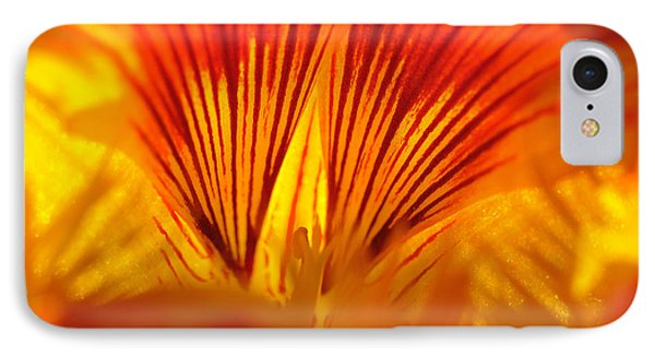 IPhone Case featuring the photograph Inside A Flower by Luis Esteves