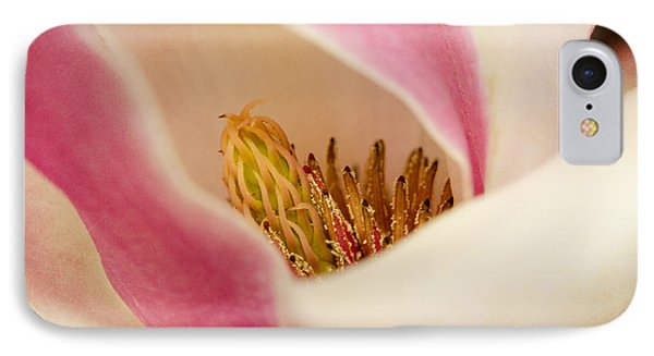 Inside A Tulip Tree Blossom IPhone Case by MaryJane Armstrong