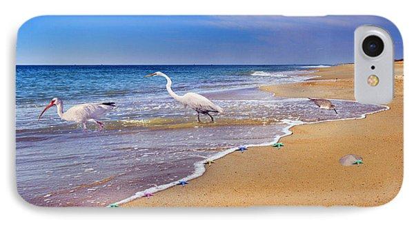 Inspiring Ibis Egret Sandpiper Starfish Sand Dollars  IPhone 7 Case