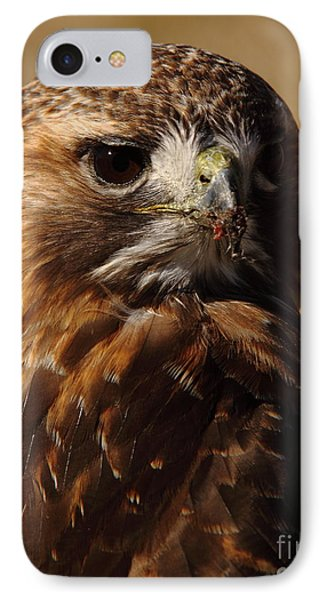 Red Tailed Hawk Portrait IPhone Case by Robert Frederick