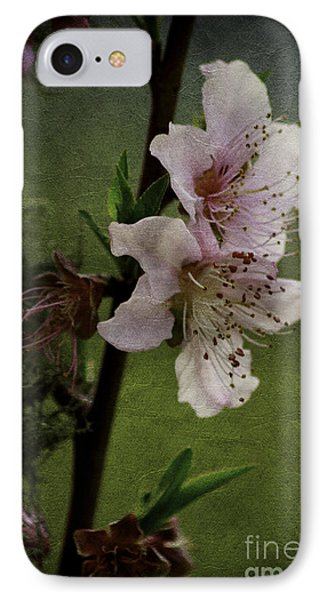 Into Spring IPhone Case by Lori Mellen-Pagliaro