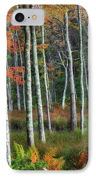 Into The Autumn Forest IPhone Case by Bill Wakeley
