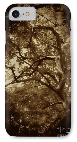 Into The Dark Wood IPhone Case by Dan Stone