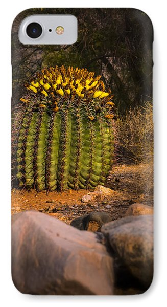 IPhone Case featuring the photograph Into The Prickly Barrel by Mark Myhaver