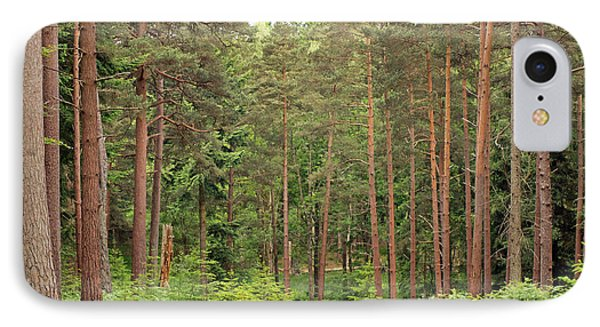 Into The Woods IPhone Case by Tony Murtagh