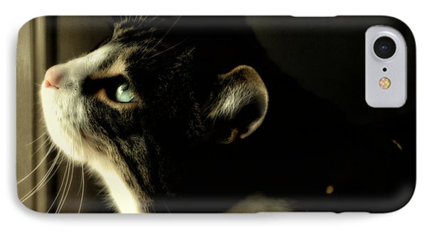 Intrigued IPhone Case by Shari Nees