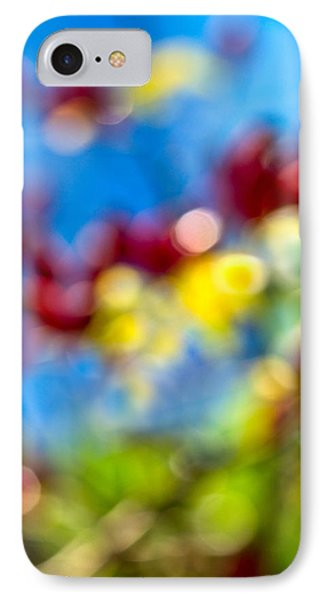 iPhone Case - Colors Of Autumn IPhone Case by Alexander Senin
