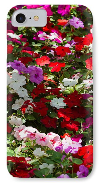 iPhone Case - Summer Carpet IPhone Case