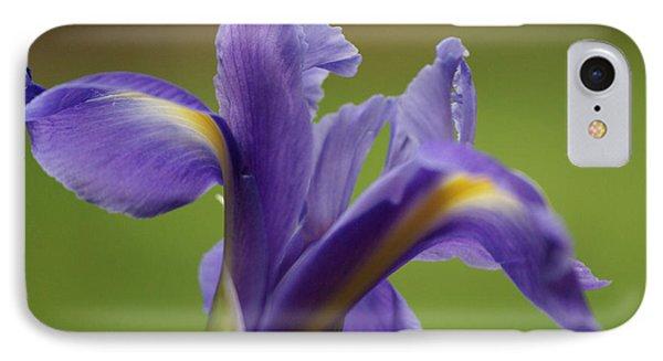 Iris 3 Phone Case by Carol Lynch
