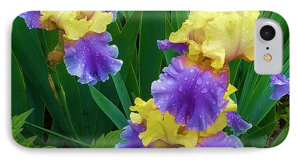 Iris After The Rain IPhone Case