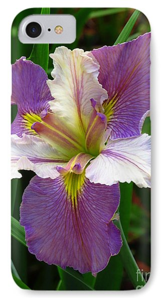 IPhone Case featuring the photograph Iris Beauty by Phyllis Beiser