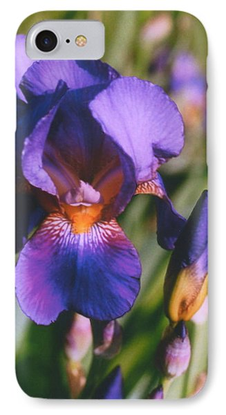 IPhone Case featuring the photograph Iris Bloom by Mary Armstrong