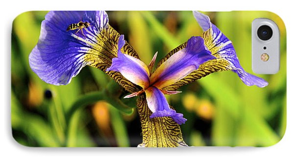 IPhone Case featuring the photograph Iris by Cathy Mahnke