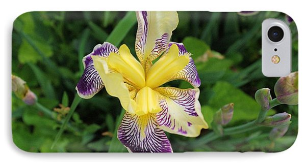 IPhone Case featuring the photograph Iris by David Rizzo