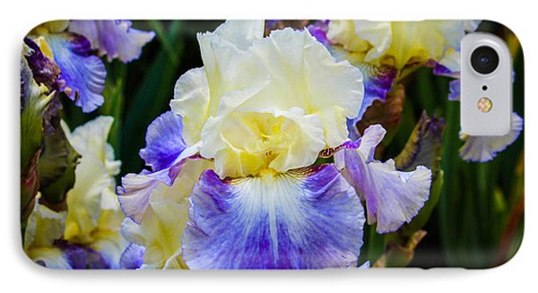 IPhone Case featuring the photograph Iris In Blue And Yellow by Patricia Babbitt