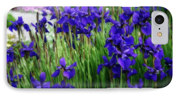 IPhone Case featuring the photograph Iris In The Field by Kay Novy